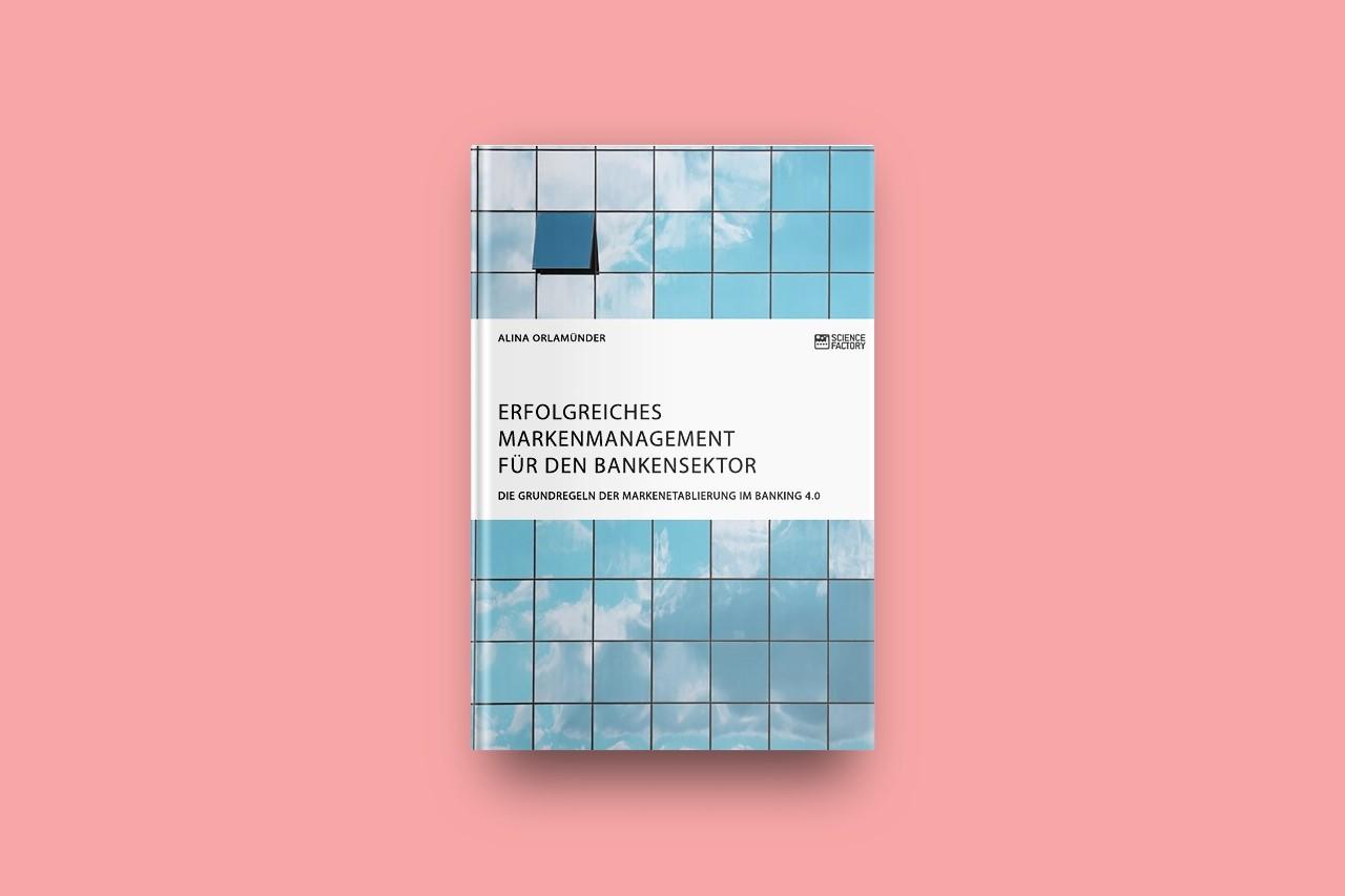 Buch Erfolgreiches Markenmanagement für den Bankensektor Orlamünder Alina